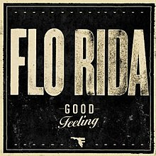 Flo Rida   Feeling good