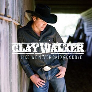 Like We Never Said Goodbye - Image: Like We Never Said Goodbye
