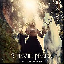 Stevienicks inyourdreams.jpg