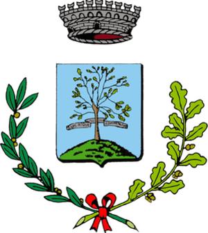 Tombolo, Veneto - Image: Tombolo Stemma