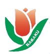 Official logo of Naka