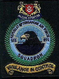 111Sqn shoulder patch.jpg