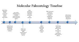 Molecular paleontology - Image: Molecular Paleontology Timeline