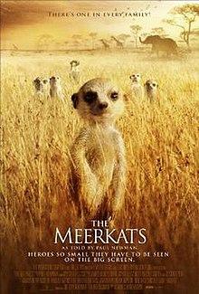 The Meerkats Wikipedia