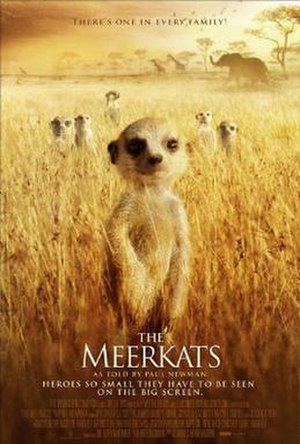 The Meerkats - Promotional movie poster