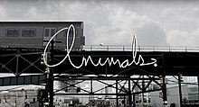 Animals. title card.jpg
