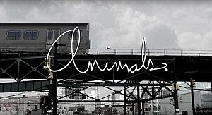 Animals. - Image: Animals. title card