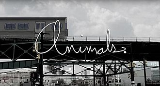 Animals (U.S. TV series) - Image: Animals. title card