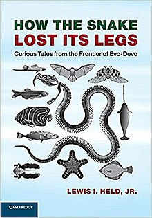 How the Snake Lost Its Legs - Wikipedia