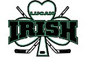 Lucan Irish