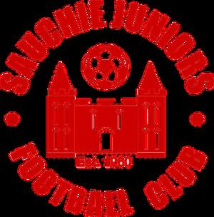 Sauchie Juniors F.C. - Image: Sauchiefc