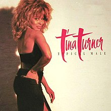 Tina Turner - Typical Male.jpg