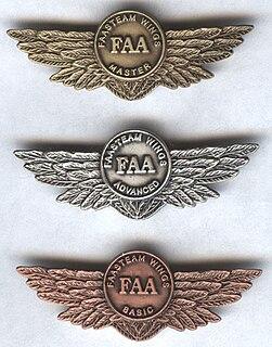 Award pin
