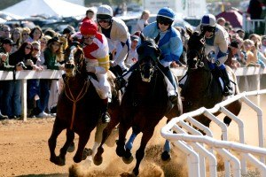 Montpelier (Orange, Virginia) - Hunt Races