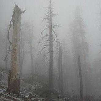 Mount Eerie pts. 6 & 7 - Image: Mount Eerie pts. 6 & 7