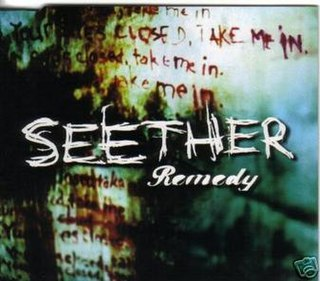 Remedy (Seether song) 2005 single by Seether