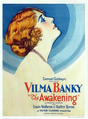 The Awakening (1928 film) - Film poster