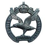 Glider Pilot Regiment Badge.jpg