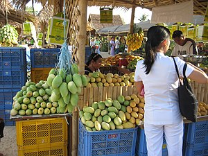 Guimaras - Mangoes galore in the Guimaras Manggahan Festival