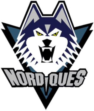 1994–95 Quebec Nordiques season - Had the Nordiques stayed in Quebec instead of heading for Denver, this would have been the franchise's new logo starting in 1996.