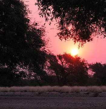 Sunset in Namibia, 2007.