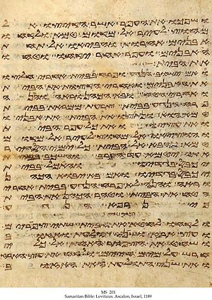 A page from Leviticus, in the Samaritan bible
