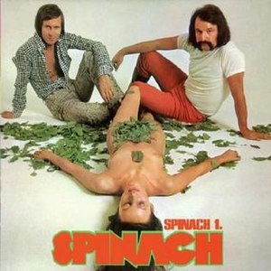 Spinach 1 - Image: Spinach 1