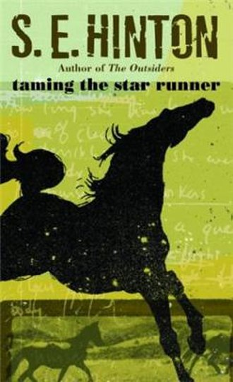 Taming the Star Runner - Image: Taming the Star Runner cover