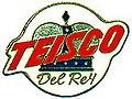 120px Teisco logo