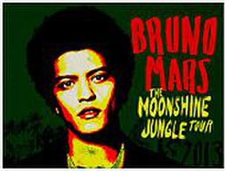 Moonshine Jungle Tour - The first promotional poster of the tour which included dates prior to 2014.