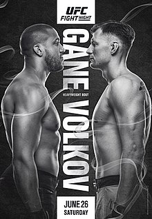 UFC Fight Night 190 poster.jpg