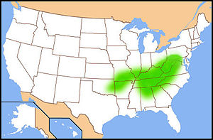 Cincinnati metropolitan area - The Upland South.