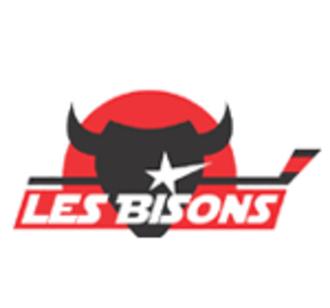 Bisons de Neuilly-sur-Marne - Image: Bisons de Neuilly sur Marne logo