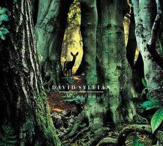 <i>Manafon</i> (album) 2009 studio album by David Sylvian