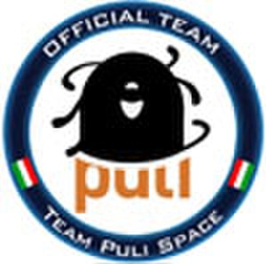 Puli Space Technologies - Official button of Team Puli
