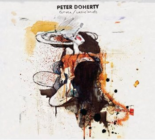 <i>Grace/Wastelands</i> 2009 studio album by Peter Doherty