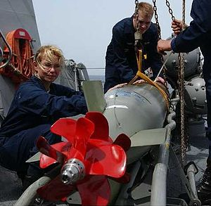 Mark 46 torpedo - A Mark 46 Mod 5A torpedo is inspected aboard the guided missile destroyer USS ''Mustin''.