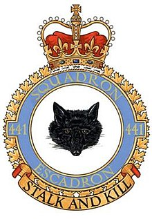 Image result for 441 Squadron