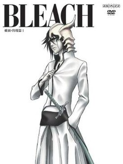 Bleach Season 6 Episode 110-131 Subtitle Indonesia