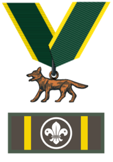 Bronze Wolf Award The highest award in Scouting
