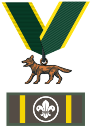 "Bronze Wolf Award - Award with ribbon and ""knot"" badge"