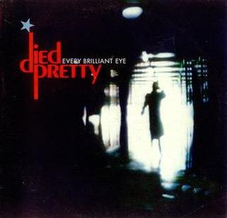 <i>Every Brilliant Eye</i> 1990 studio album by Died Pretty