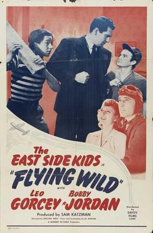 Flying Wild - Film poster