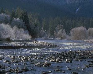 Hoh River - The Hoh River in winter.