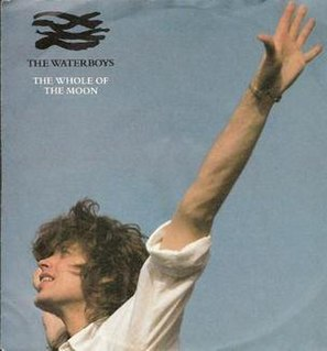 The Whole of the Moon 1985 single by The Waterboys
