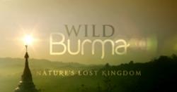 Wild Burma Nature S Lost Kingdom