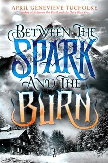 Between the Spark and the Burn book cover.jpg