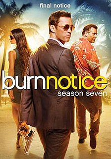 <i>Burn Notice</i> (season 7)