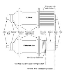 Talkcogset wikipedia freehub vs freewheel hub comparison diagramedit ccuart Choice Image