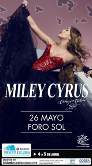 Gypsy Heart Tour - Promotional poster for the Gypsy Heart Tour